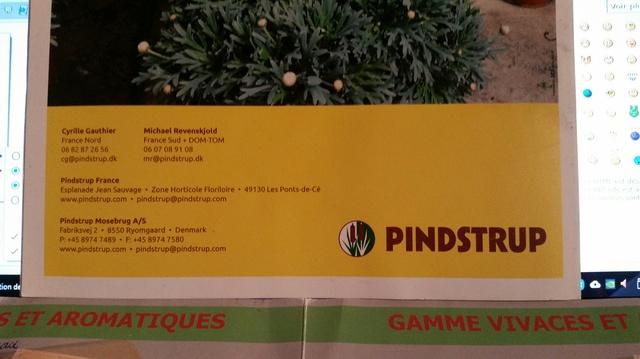 Substrat Pindstrup. 18030608423719712015599076