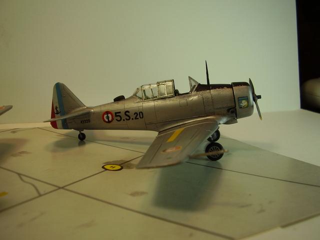 P1010122 (4)