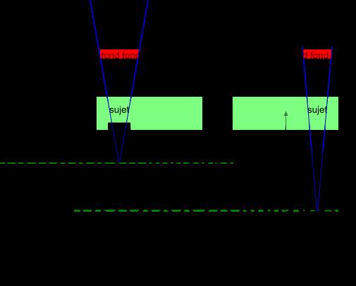 Choix de la focale en macro 18033009153721499815640110