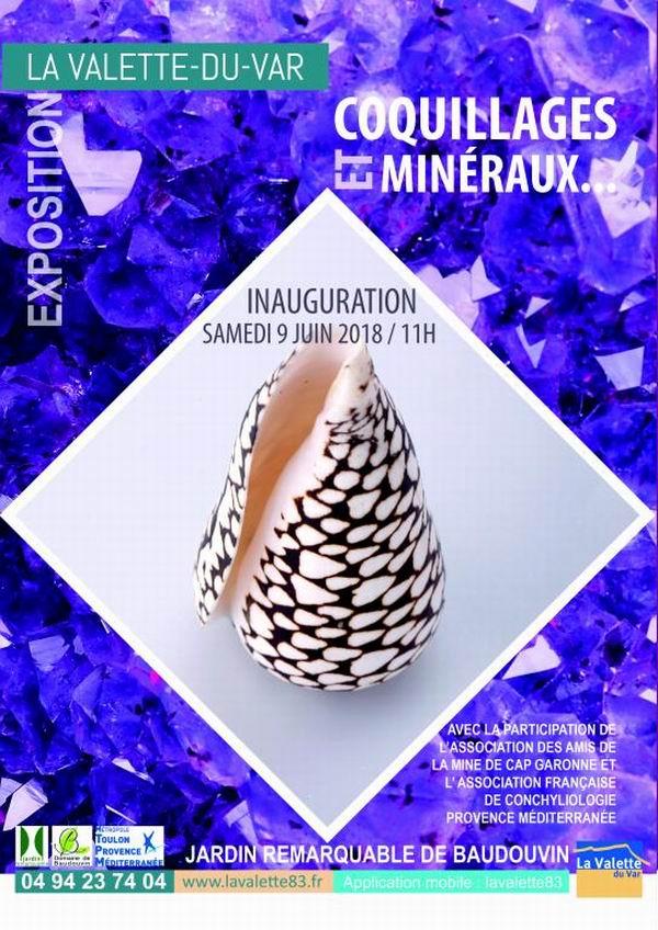 Exposition coquillages et minéraux à La Valette VAR 18050404091014587715698524