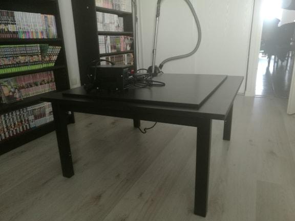 [Culture] Le Kotatsu ! 18050412550124055615698889