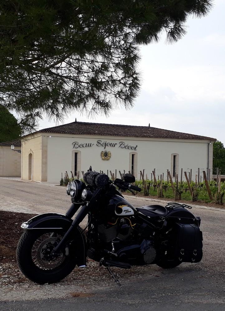 Combien de Softail sur le forum Passion-Harley - Page 14 1805050654558382715700493