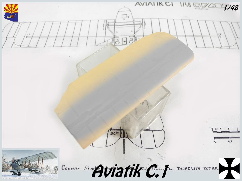Aviatik B.II copper state models 1/48 - Page 2 18051510333023469215714227