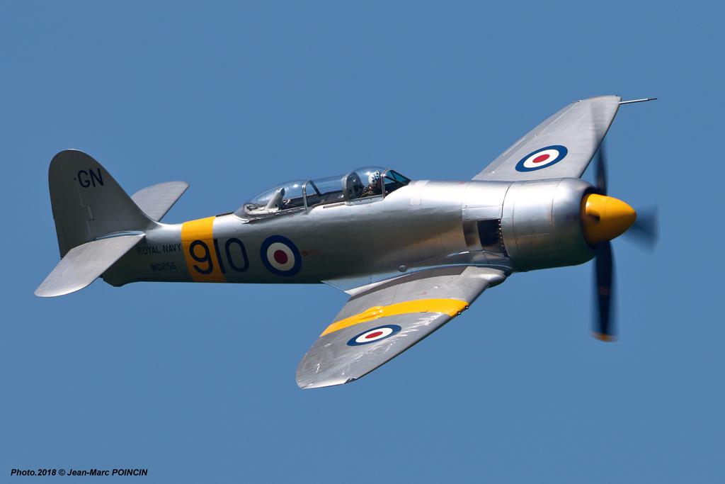 Hawker Fury T.20 WG655_La Ferté_Photo.2018©J-M POINCIN_3424mr