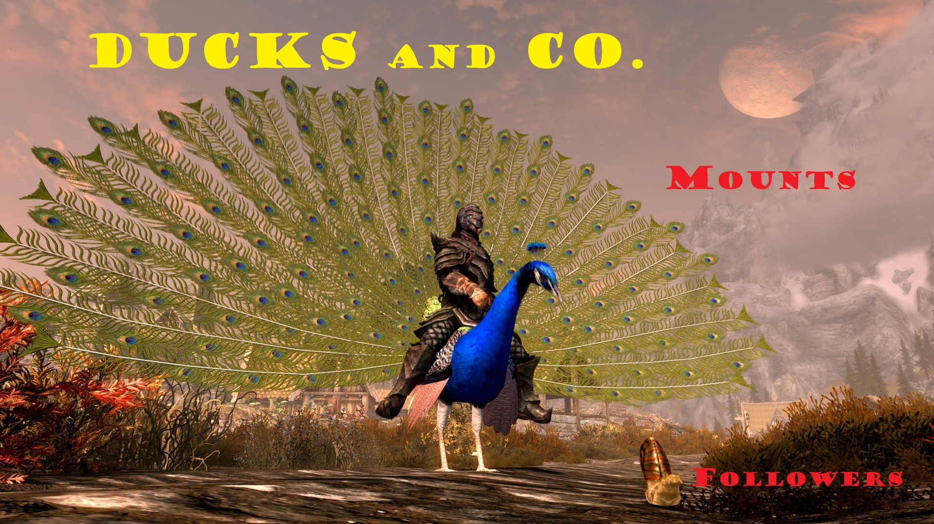 Ducks and Co. 2