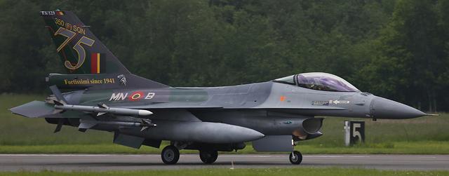 General Dynamic F-16A(MLU) FA-129 BAF Hasegawa 1/32  18052802253423669015733496