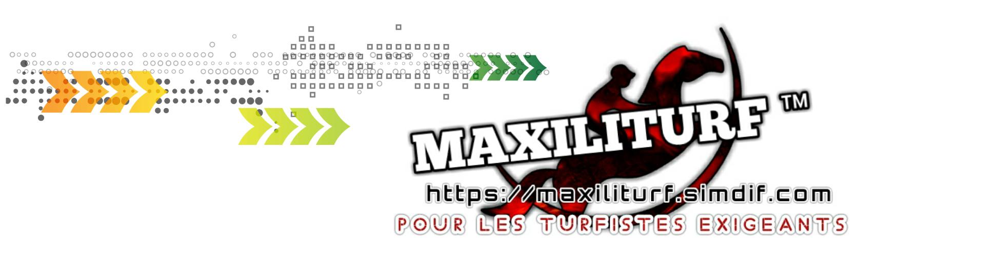 Maxiliturf