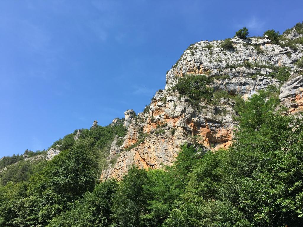 Vacances en Lozère ! 18080706590623124315839397
