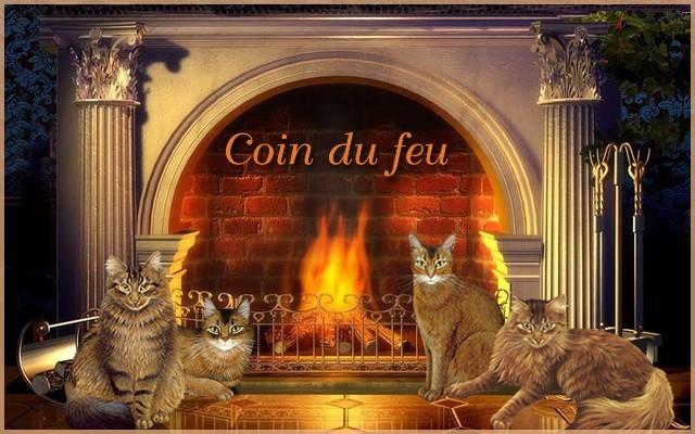 Forum des Membres : Groupe le Coin du feu 1809020509251858215874166