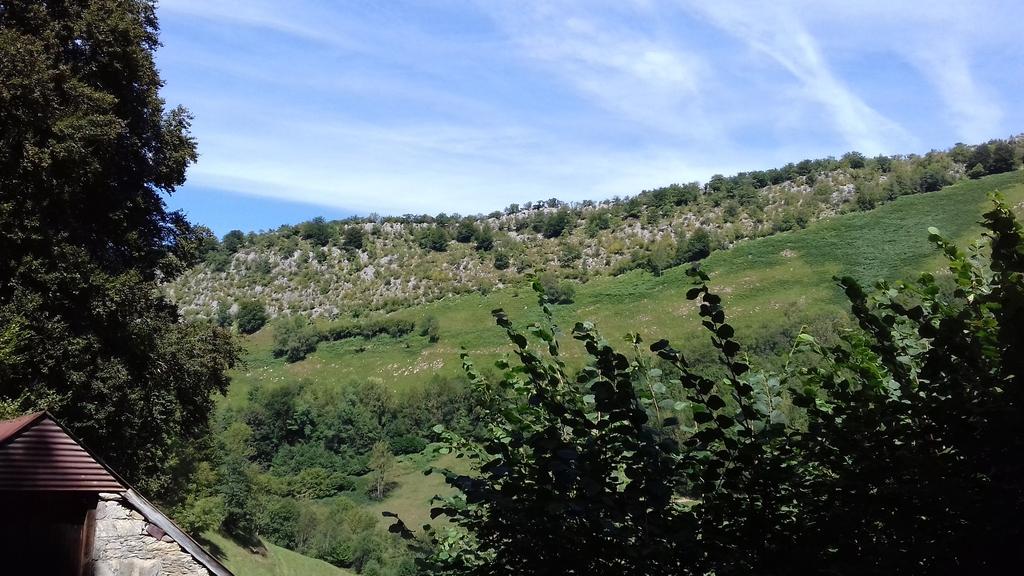 Le vallon sous le bois d'Oubac