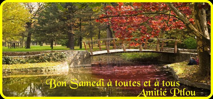 Les bonjours et les bonsoirs de 2019 - Page 3 18090704230423641615881815