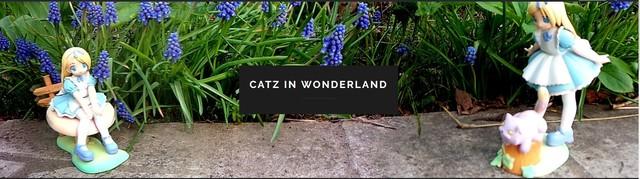 catz in wonderland