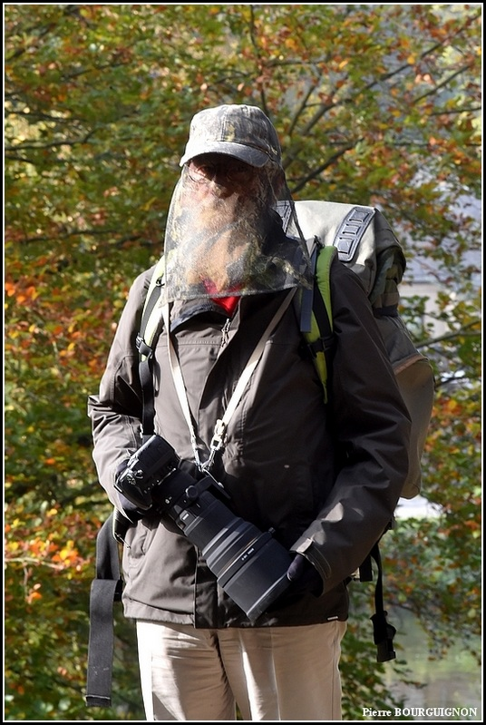 Harnais pour photographe