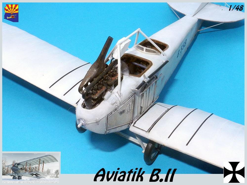 Aviatik B.II copper state models 1/48 - Page 5 18102203400323469215956839