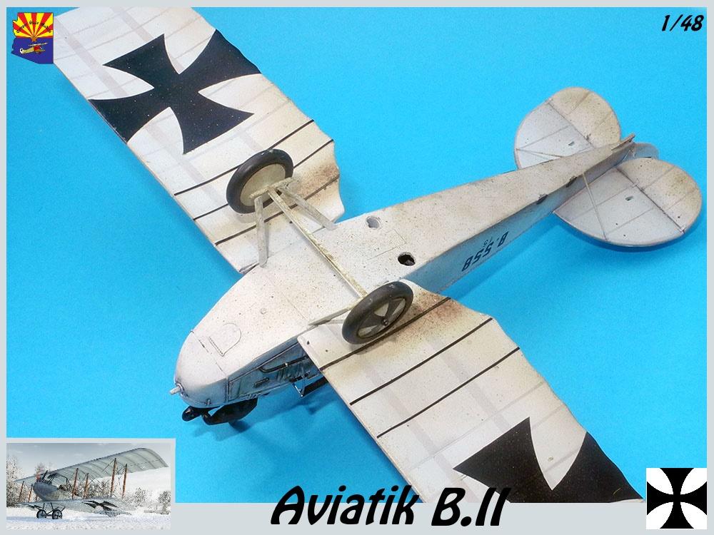 Aviatik B.II copper state models 1/48 - Page 5 18102203400323469215956840