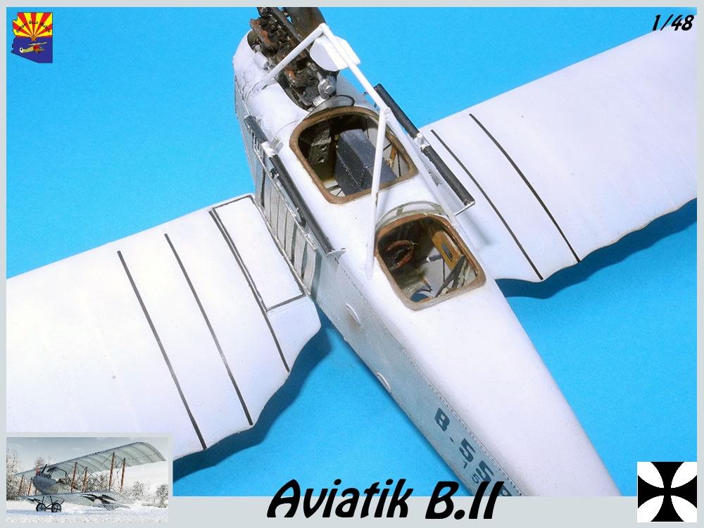 Aviatik B.II copper state models 1/48 - Page 5 18102203400323469215956841