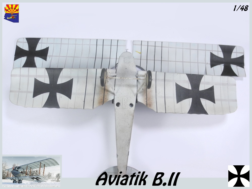 Aviatik B.II copper state models 1/48 - Page 6 18102810083923469215968169