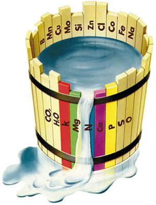 Dosage engrais pour débutants et Phal. hybrides 18110607410720151715984249