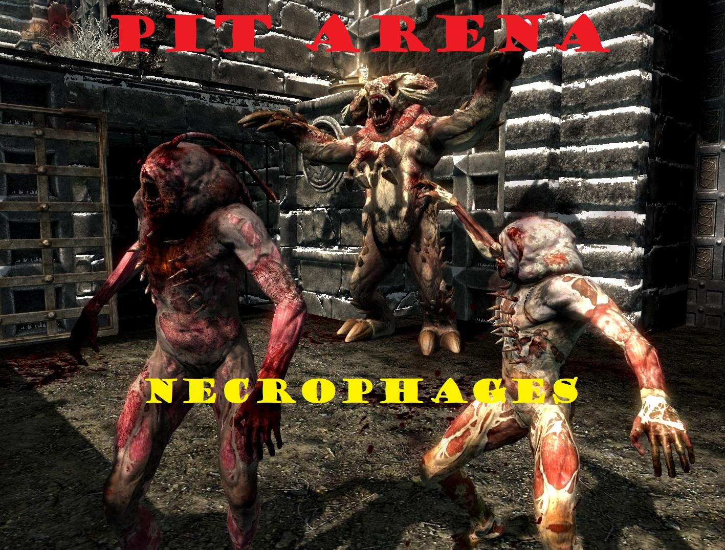 Pit arena necro 2