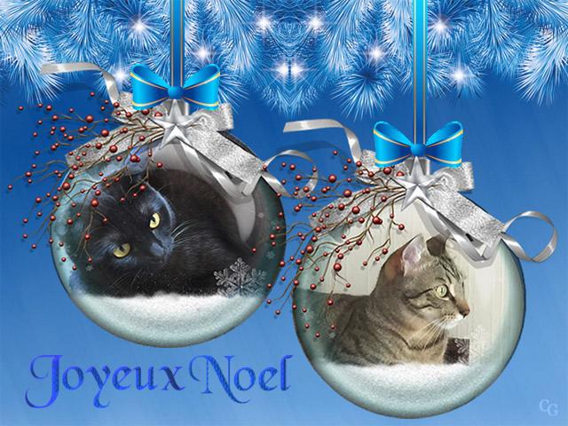 Chats : Noël 1812061046301858216027060