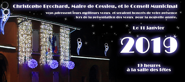 invitation Voeux 2019(613)