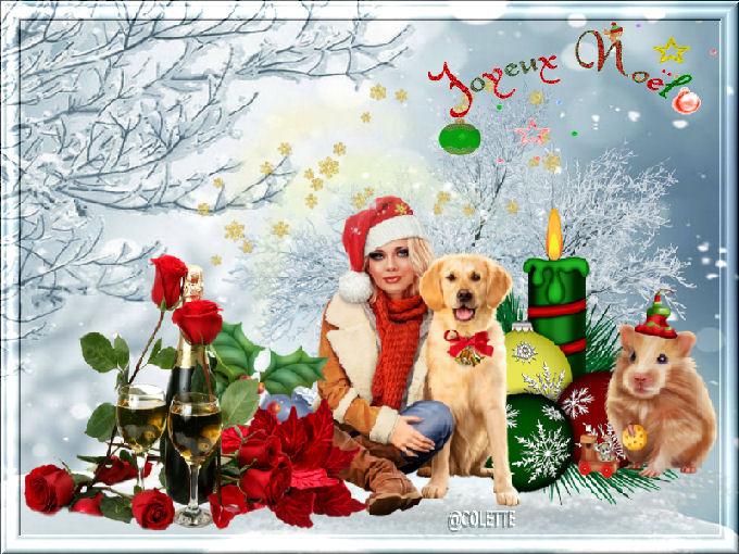 Offres de signatures de dernière minute pour la Noel 18122111562523641616045382