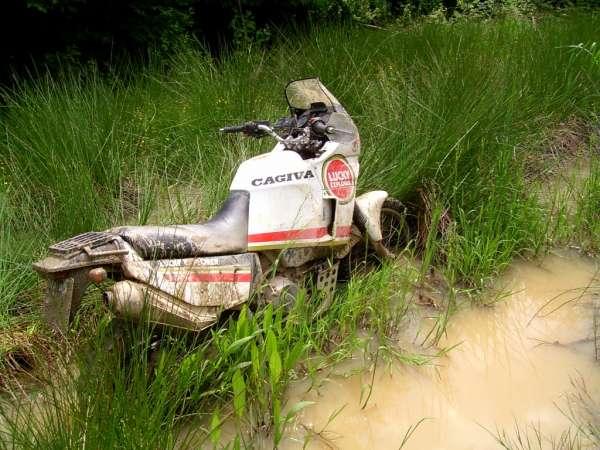 Dans la boue... 1901230248192411416088443
