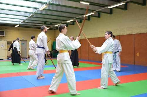 STAGE KEN - stage kenjutsu avec Dieudo (13)