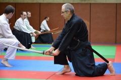 STAGE KEN - stage kenjutsu avec Dieudo (6)