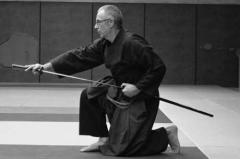 STAGE KEN - stage kenjutsu avec Dieudo (9)
