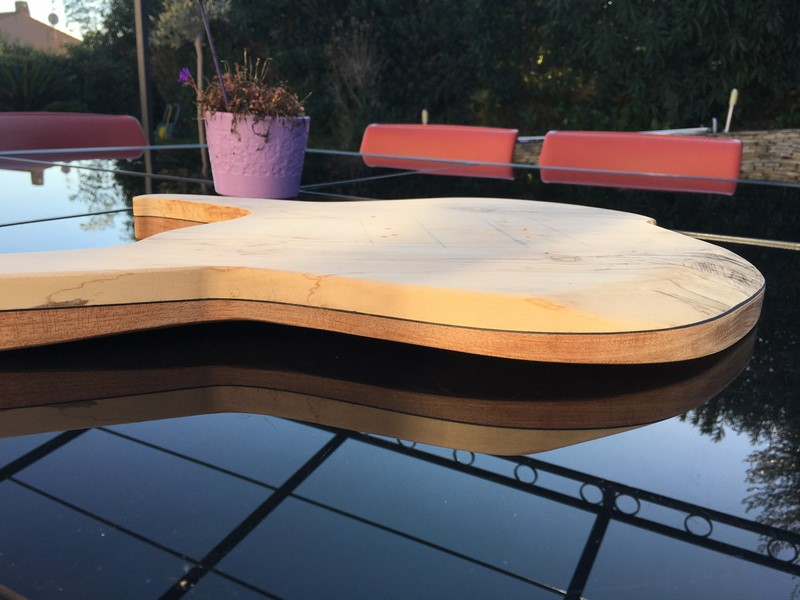 PROJET LUTHERIE - IMG_0792 (Copier)