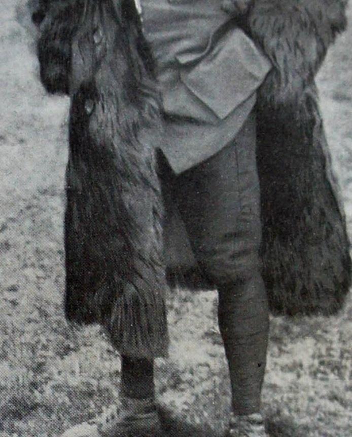 Au sujet du pantalon de l'uniforme du capitaine Brocard, de la N3 . 19021904400023469216126031