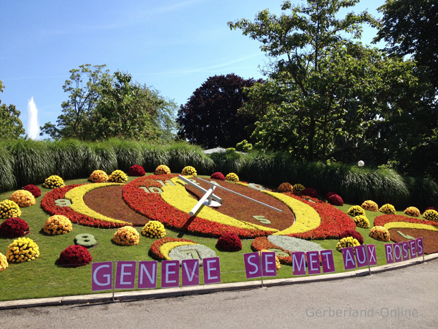 Horloge : Fleurie (Geneve) 76542-Horloge-101A
