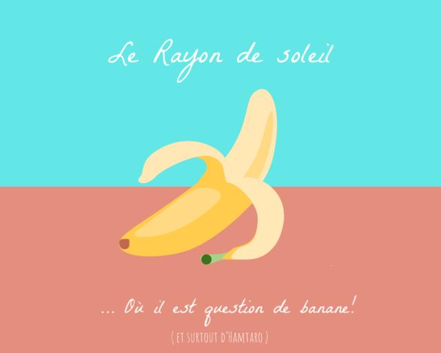 ~Le Rayon de Soleil...prends le volant!~bas P2 - Page 2 19031901060024737816165169