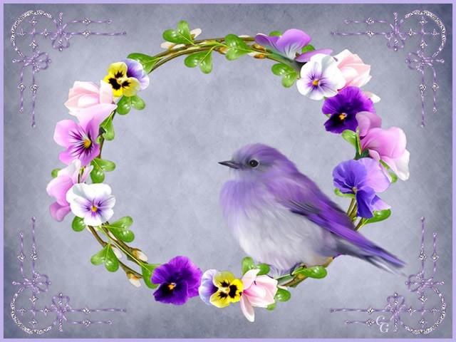 Oiseaux II 1903220427381858216169691