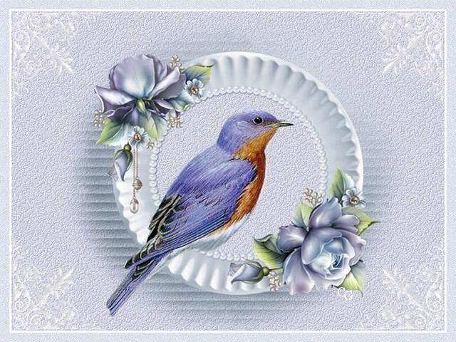 Oiseaux II 1903220427381858216169693