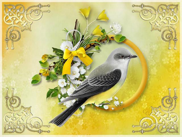 Oiseaux II 1903220427391858216169694