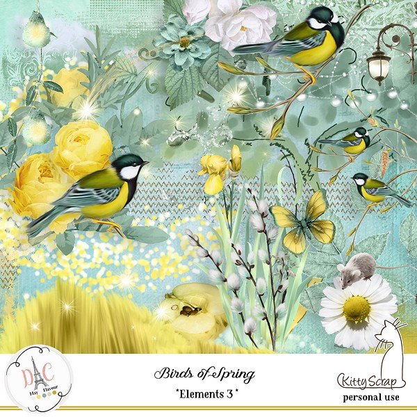 MAY FLAVOR - BIRDS OF SPRING - samedi 4 mai / saturday may 4th 19041602584319599816201501