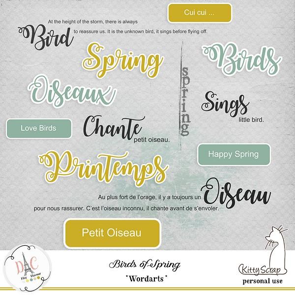 MAY FLAVOR - BIRDS OF SPRING - samedi 4 mai / saturday may 4th 19041602584519599816201502
