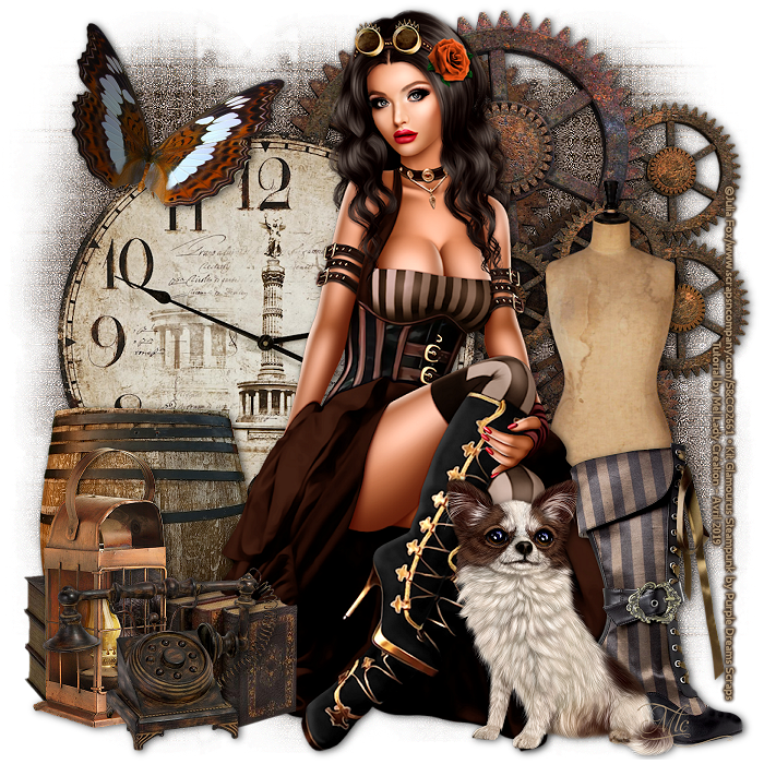 Glamourus Steampunk 19042304403624787116208933