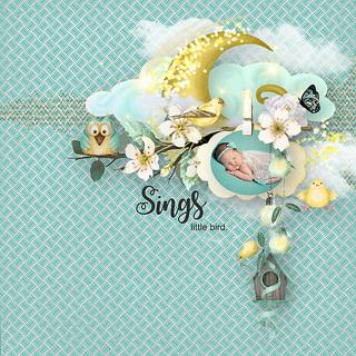 MAY FLAVOR - BIRDS OF SPRING - samedi 4 mai / saturday may 4th 19050601422619599816226092