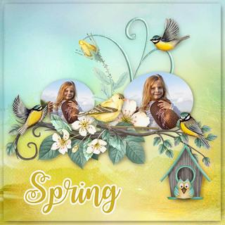 MAY FLAVOR - BIRDS OF SPRING - samedi 4 mai / saturday may 4th 19050601423119599816226097
