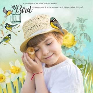MAY FLAVOR - BIRDS OF SPRING - samedi 4 mai / saturday may 4th 19050601423119599816226098