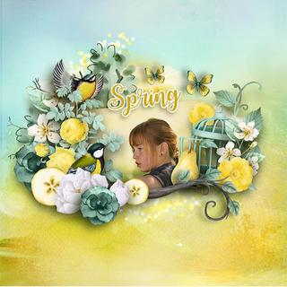 MAY FLAVOR - BIRDS OF SPRING - samedi 4 mai / saturday may 4th 19050601423819599816226099