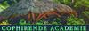 Logo Cophirende Academie