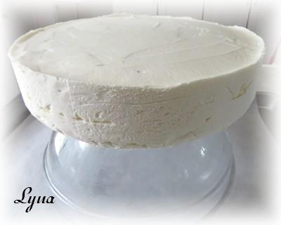 Gâteau mousse de chocolat blanc, miroir de chocolat noir 19061605371518416816276060