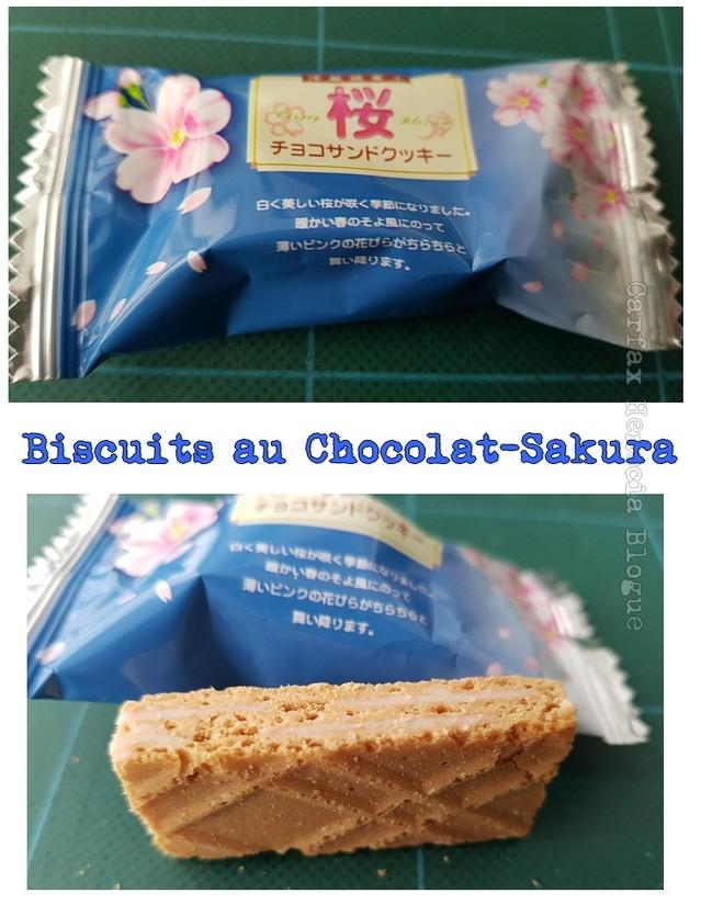 Biscuits au Chocolat-Sakura