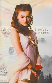 Bianca H. Selwyn