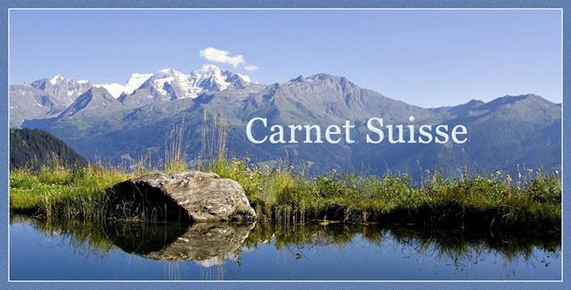 Voir aussi : Carnet Suisse 315148-PUB-101