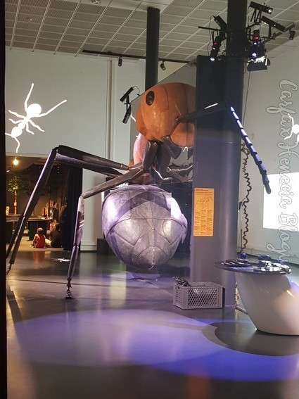 fourmi géante